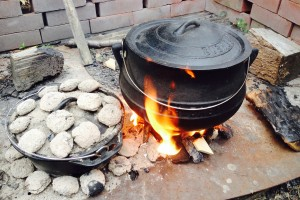 Barbeque and Campfire